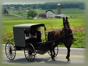 Amish trained green home builder in Virginia